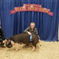 Casey is posing in front of the State Farm Show sign with her blue ribbon and her winning pig named 'August'.